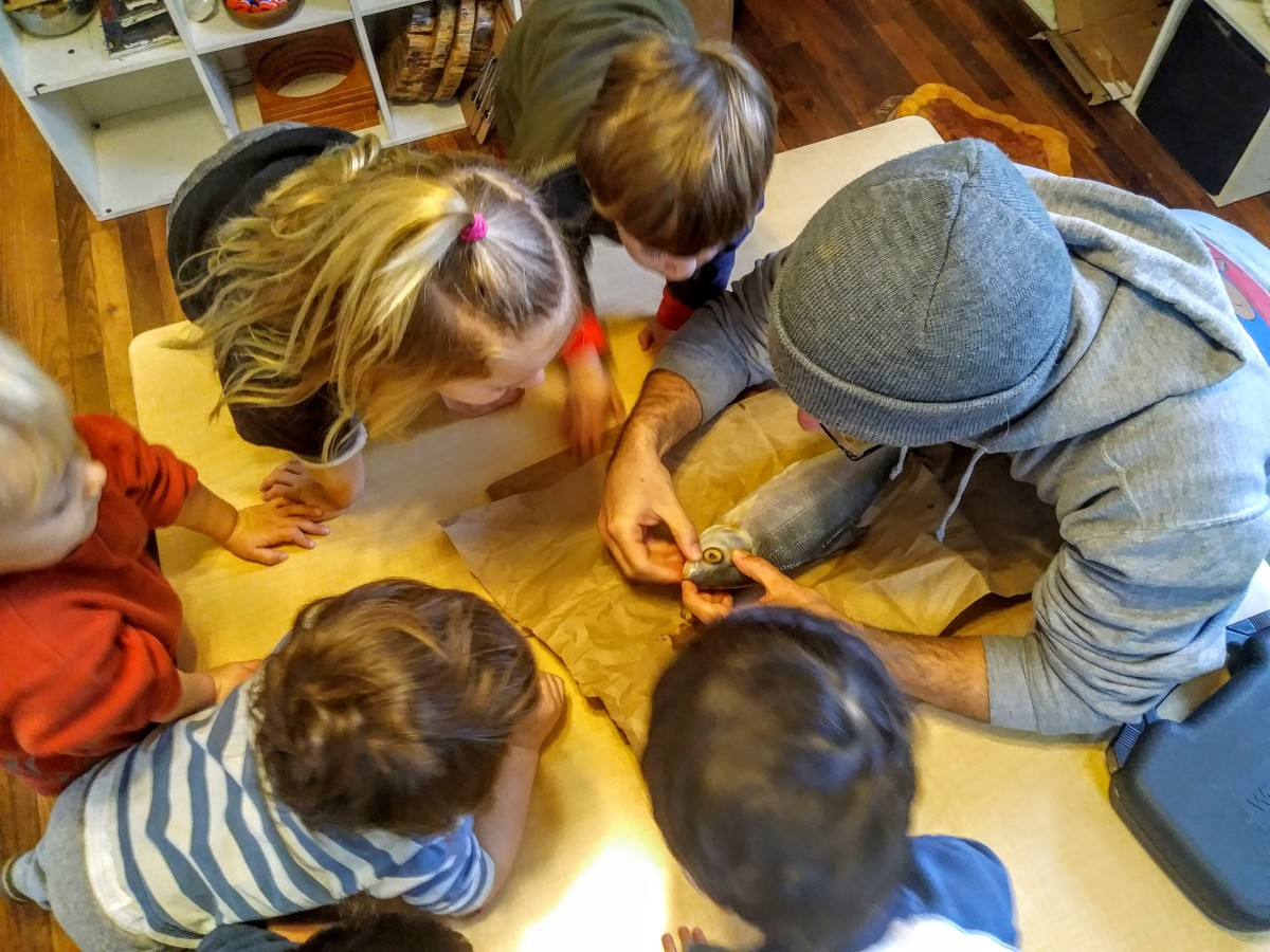 Reggio, Student Interest, and Denying Impossibility